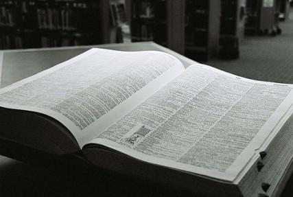 FLI_030513_dictionary