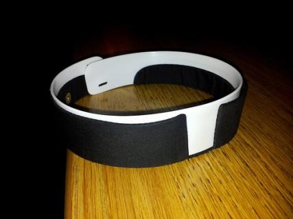 FLI_031913_collar