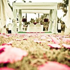 FLI_041613_marriage