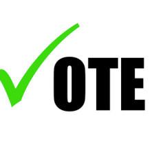 FLI_102813_vote