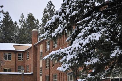 A shot of Whitworth in the snow./Josie Camarillo