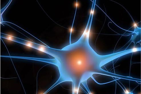 Prayer and the Autonomic Nervous System