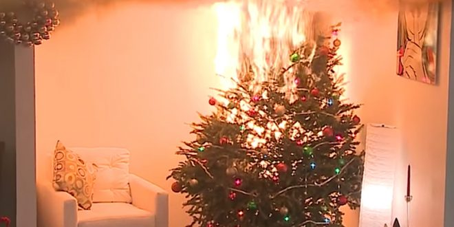 Christmas Tree On Fire.Holidays On Fire When Christmas Trees And Candles Lead To